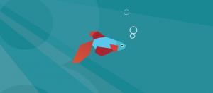 Windows 8_wallpaper fish poisson