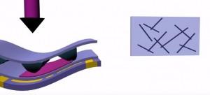 Monorecepteur en carbone et oscillateurs en anneau