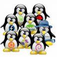 Le 25 Août 1991, un certain Linus Torvalds annonçait les prémices de l'OS libre...