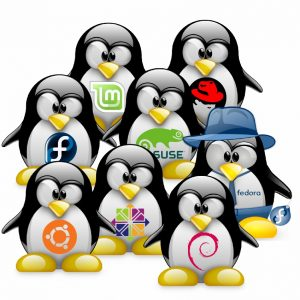 Linux_distributions