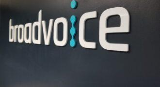 Broadvoice : brèche sécuritaire impactant 350 millions d'utilisateurs du service Cloud VoIP ! (une B-hive d'un autre genre…)
