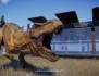 Jurassic World Evolution 2 : des nouvelles de première fraîcheur via le Journal du Développeur numéro 1 ! (mais où est la chèvre...)